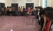 Thái Bình: Đột kích trang trại, phát hiện 50