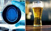 Nghiên cứu 30 năm: Không uống rượu bia dễ... mất trí nhớ
