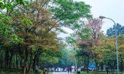 Gợi ý 6 điểm du lịch hấp dẫn quanh Hà Nội dịp mùng 2/9