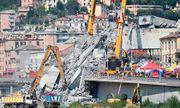 Hơn 800 cây cầu ở Pháp có nguy cơ sụp đổ