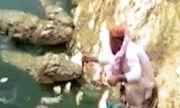 Video: Rợn người xem cụ ông cho 5 con cá sấu khổng lồ ăn thịt
