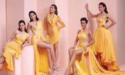 Nhan sắc 'nữ thần' của dàn Hoa hậu, Á hậu Hoàn vũ Việt Nam trong lần hiếm hoi hội tụ