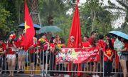 Hàng ngàn cổ động viên nhuộm đỏ sân bay Nội bài chờ đón Olympic Việt Nam