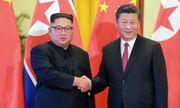 Chủ tịch Trung Quốc Tập Cận Bình gửi thư riêng cho lãnh đạo Kim Jong-un