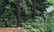 Xe máy lao xuống vực sâu gần 100m ở Tam Đảo, đôi nam nữ thương vong