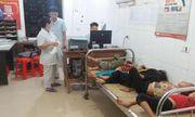 7 người nhập viện cấp cứu vì bị ong đốt khi đi thu hoạch lúa