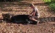 Video nam thanh niên liều lĩnh trèo lên lưng cá sấu khổng lồ để chụp ảnh