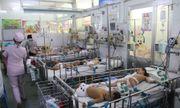 TP. HCM: Số trẻ nhập viện vì tay chân miệng tăng gấp 5 lần