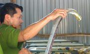 Phát hiện cơ sở tái chế dầu nhớt thải vi phạm hàng loạt quy định