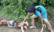 Video: Rùng mình cảnh chị gái dùng em trai làm mồi nhử bắt trăn