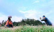 Đến Fansipan ngắm biển hoa tam giác mạch bồng bềnh, vui hội vùng cao