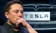 CEO Elon Musk dự kiến dốc tiền túi mua thêm 20 triệu USD cổ phiếu Tesla