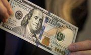 Vụ đổi 100 USD phạt 90 triệu đồng: Phó Thủ tướng yêu cầu nghiên cứu tính hợp pháp
