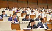 Bộ trưởng Phùng Xuân Nhạ nhận trách nhiệm vụ học sinh viết, vẽ vào SGK gây lãng phí