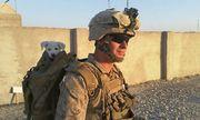 Xả súng khiến 13 người chết tại Mỹ: Nghi phạm từng là lính Thủy quân lục chiến