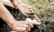 Xét xử vụ trai làng hiếp dâm người phụ nữ ngoại quốc giữa đồng vắng
