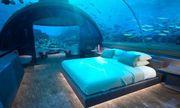 Có gì bên trong khách sạn dưới đáy biển đầu tiên trên thế giới, giá thuê 1,1 tỷ đồng/đêm