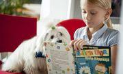 Phần Lan: Dùng chó để giúp học sinh học tập tốt hơn