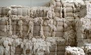 Công ty Trung Quốc trả nợ bằng áo len, giăm bông... khiến giới đầu tư