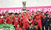 Vô địch AFF Cup 2018, Việt Nam quyết đấu Hàn Quốc trên sân Mỹ Đình