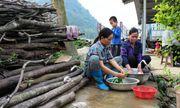 Cao Bằng tổ chức hội nghị, tập huấn về vệ sinh và nước sạch nông thôn
