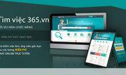 Timviec365 - Trợ thủ đắc lực giúp bạn tìm kiếm việc làm nhanh chóng