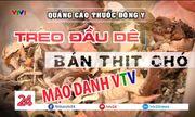 Giả mạo VTV quảng cáo thuốc Đông y: