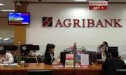 Năm 2018 hệ thống Agribank trả lại tiền thừa cho khách hàng trên 136 tỷ đồng