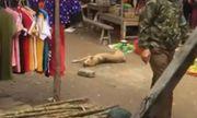Đau lòng chó mẹ nằm bất động trên nền đất vì bị nhóm thanh niên đánh đập dã man