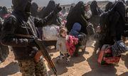 Tình hình Syria: Hơn 3.000 kẻ khủng bố IS và thân nhân lũ lượt ra đầu hàng