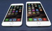 TP.HCM: Điều tra vụ lừa đảo tiền mua iPhone 6 hàng chục tỷ đồng