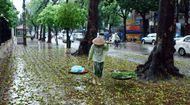 Dự báo thời tiết ngày 6/10: Bắc Bộ mưa rào rải rác, đề phòng tố, lốc