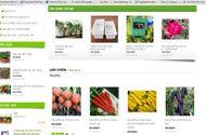 """Tư vấn tiêu dùng - Tin nông sản sạch rao bán tràn lan trên mạng, có ngày """"ăn đủ"""""""