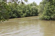 Kinh doanh - Không có cây cầu, dân xã nghèo nhọc nhằn để qua sông