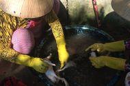 Video-Hot - Hãi hùng vặt lông vịt bằng nhựa thông đen
