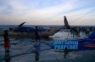 Tin trong nước - An táng cá voi nặng 10 tấn chết nổi trên vùng biển Nghệ An