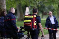 Tin thế giới - 11 người Pháp bị sét đánh trong bữa tiệc sinh nhật ở công viên