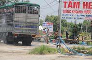 Tin trong nước - Quảng Nam: Nhiều bãi tắm heo tự phát hoạt động gây ô nhiễm môi trường
