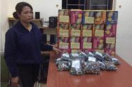 An ninh - Hình sự - Một phụ nữ mang thai vận chuyển 39 kg pháo nổ