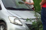 """Tin trong nước - Mất lái, xe ô tô của """"Hiệp gà"""" lao thẳng xuống ruộng"""