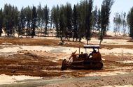 Tin trong nước - Tạm dừng dự án phá rừng phòng hộ làm sân golf ở Phú Yên