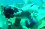 Video-Hot - Hãi hùng cảnh thợ lặn bị cá mập cắn vào chỗ hiểm