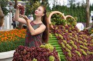 Ăn - Chơi - Lạc trong thế giới của rượu vang và những niềm vui ở Bà Nà Hills
