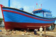 Tin trong nước - Thủ tướng chỉ đạo kiểm tra việc đóng tàu cá vỏ thép