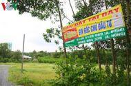 Thị trường - Bất động sản quanh sân bay Long Thành tăng giá từng ngày