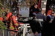 Tin tức - Hổ dữ 2 tạ xổng chuồng trên phố Paris, người dân hoảng loạn