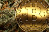 Tin thế giới - Chuyên gia thế giới nói gì khi bitcoin vượt xa hầu hết các dự đoán?