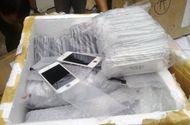Tin tức - Đề nghị truy tố nhóm buôn lậu iPhone trị giá gần 6 tỷ đồng