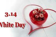 Tin tức - Valentine Trắng 14/3 là ngày gì?