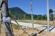 Tin tức - Tạm dừng phân lô, tách thửa đất tại Phú Quốc